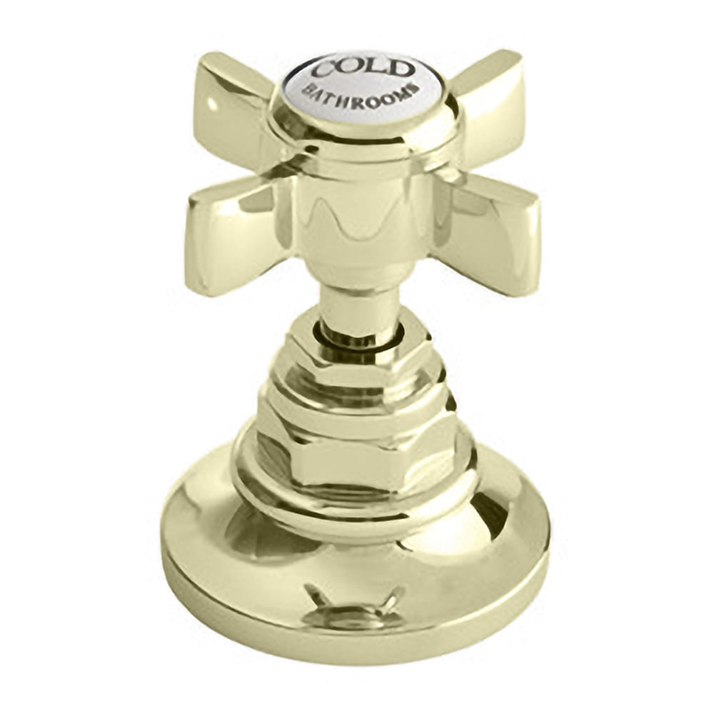 Edwardian Monobloc basin mixer complete with pop up waste